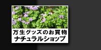 逆輸入 【送料無料】 205 GT/50R16 16インチ BRIDGESTONE ポテンザ RW006 RW006 6.5J YOKOHAMA 6.50-16 YOKOHAMA ヨコハマ ブルーアース GT AE51 サマータイヤ ホイール4本セット【YOsum20】:フジコーポレーション, ワイズオフィス:f7677ac9 --- ideractive.com